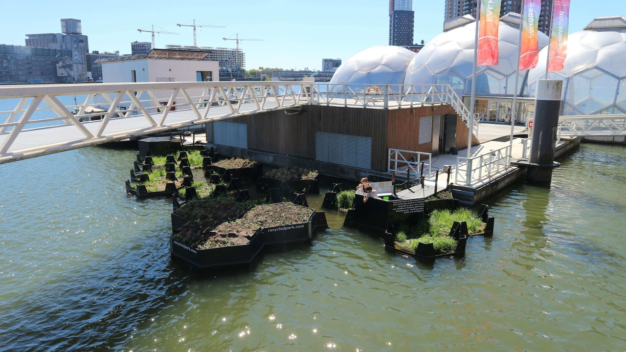 Real-life sustainability: the first islands made of recycled plastic can be found in the floating park on the Nieuwe Maas.