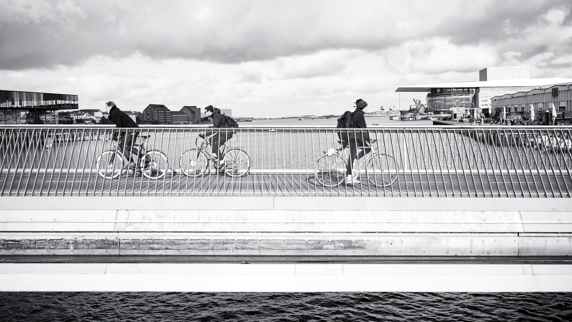 Cyclists at Copenhagen Harbour
