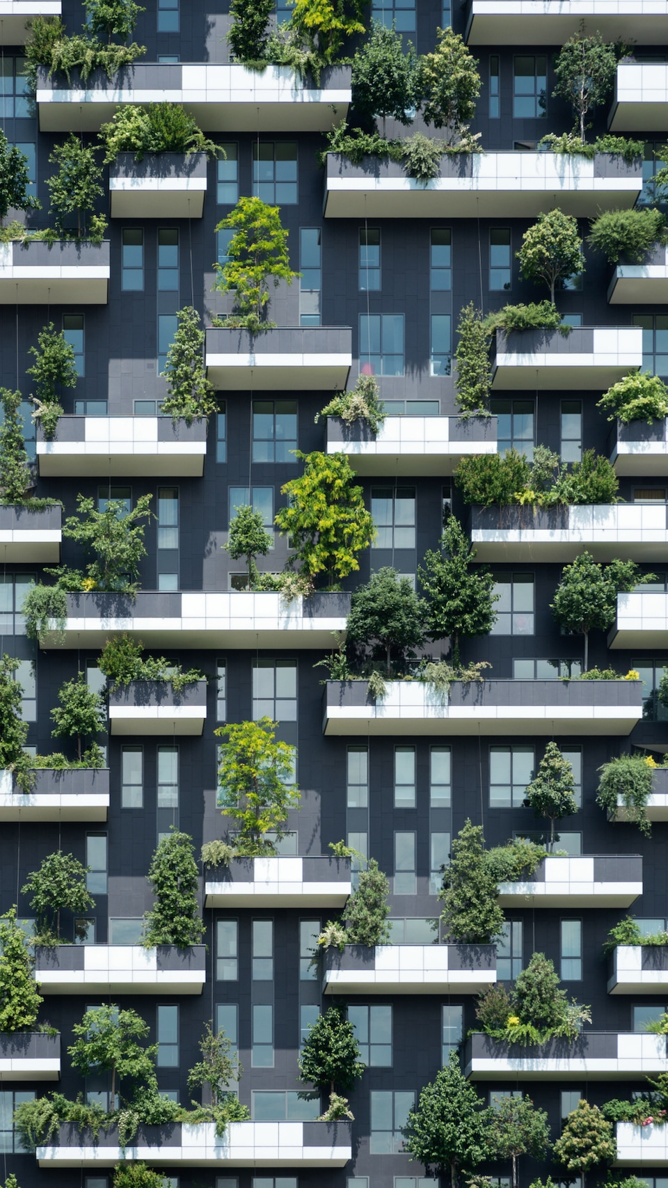 The Bosco Verticale (vertical forest) in Milan consists of twin towers with expansive balconies on all sides that accommodate roughly 700 trees, 5,000 shrubs as well as thousands of creepers and flowering shrubs.